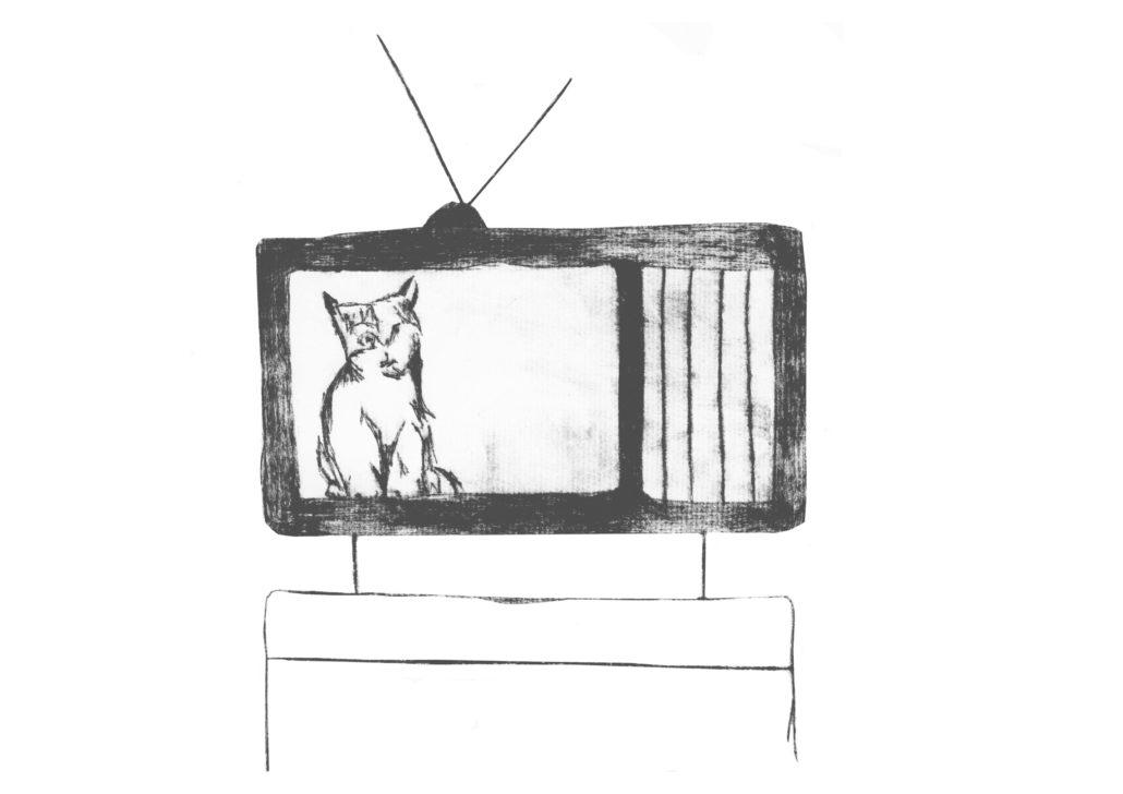 Kat in TV