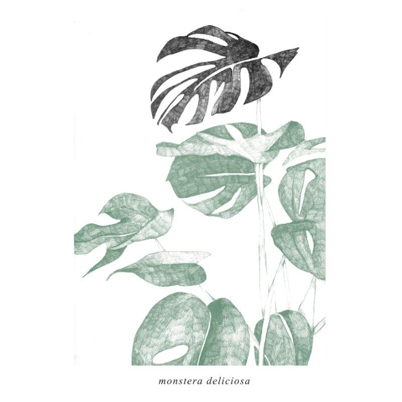 Botanica illustratie planten